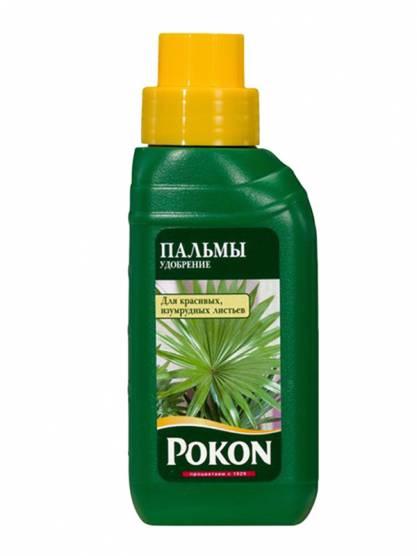 Pokon Для пальм